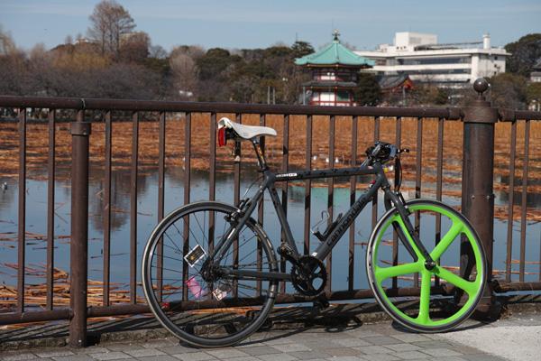 上野公園散歩写真(1)