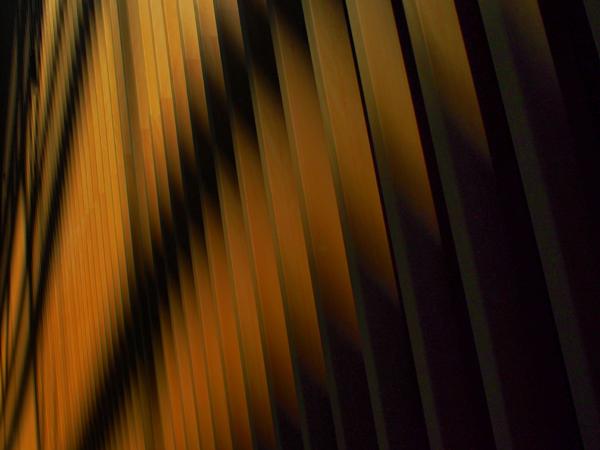 OLYMPUS M.ZUIKO DIGITAL 17mm F2.8(10)