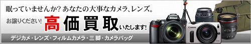 bana_kaitori_130407a