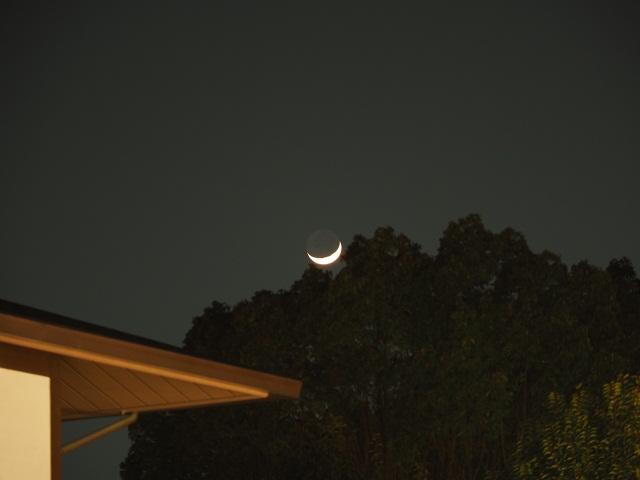 月を見上げてみると…