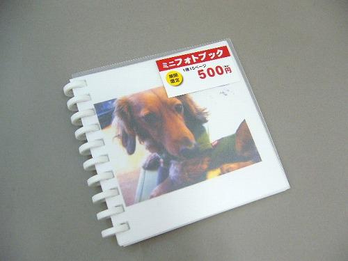 P1080489.jpg