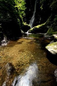 野鹿の滝④