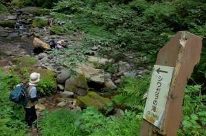シワガラの滝 アプローチ②