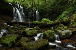 D810 猿壺の滝①