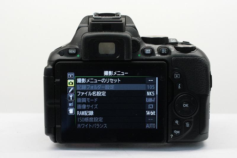 D5500 18-55VR