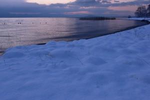 D5500 琵琶湖②