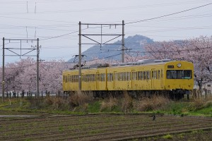 α77Ⅱ 近江鉄道②