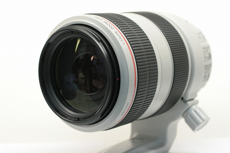 Canon  EF70-300/4-5.6 L IS USM