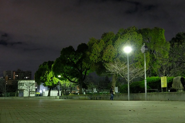 ISO12800
