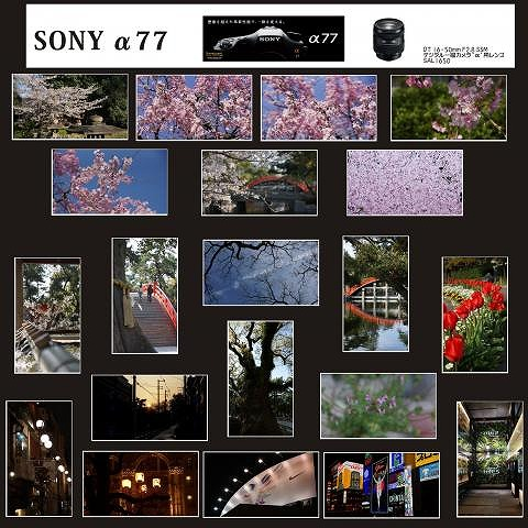SONYα77s