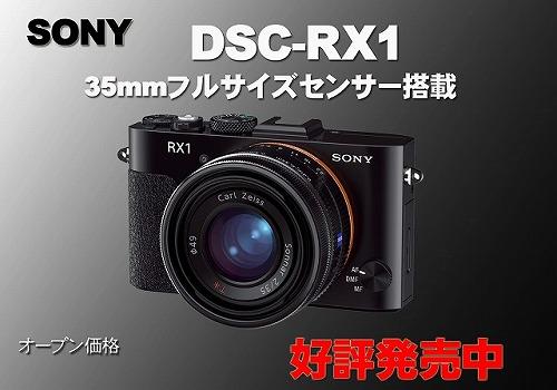 RX1のコピー