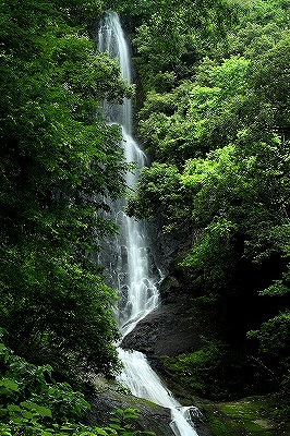 猿尾滝~2