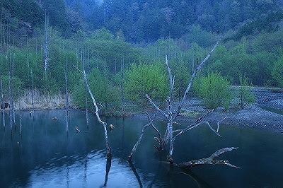 自然湖早朝EOS7