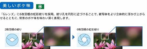 y_ky_glens_03.jpg