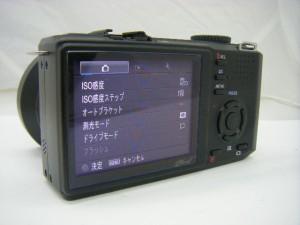 DP-2 (2)