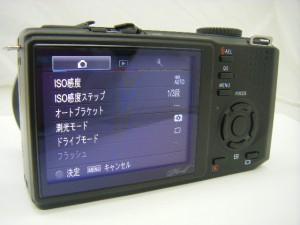DP1 (2)