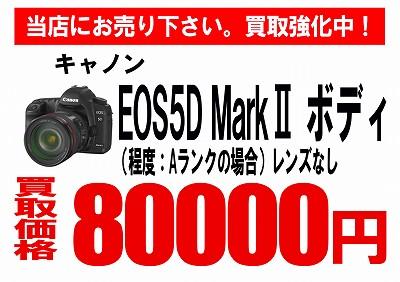 買取EOS 5DMark2 コピー