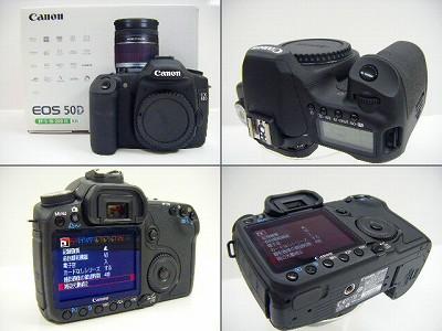 DSCF3066_20110302190911.jpg