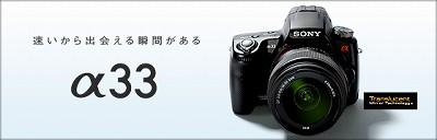 a33_l_index.jpg