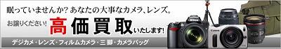 bana_kaitori_20130529172500.jpg