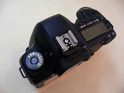 P1060423.jpg