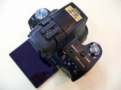 P1080085.jpg