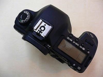 P1080153.jpg