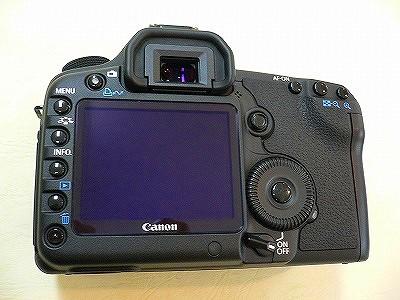 P1080155.jpg
