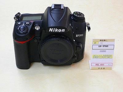 P1080595.jpg