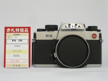 P8140507.jpg