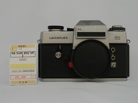 P8190569.jpg