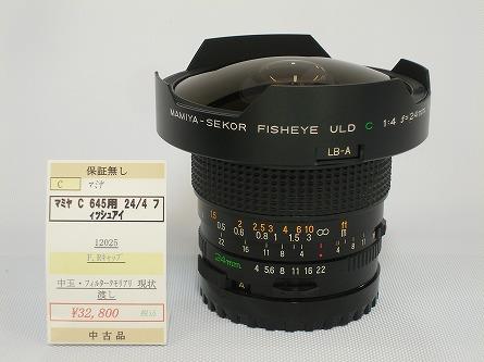 P8250754.jpg