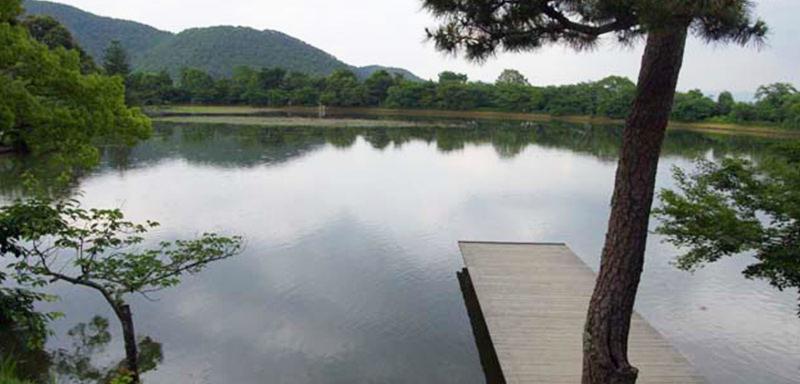 大覚寺大沢池