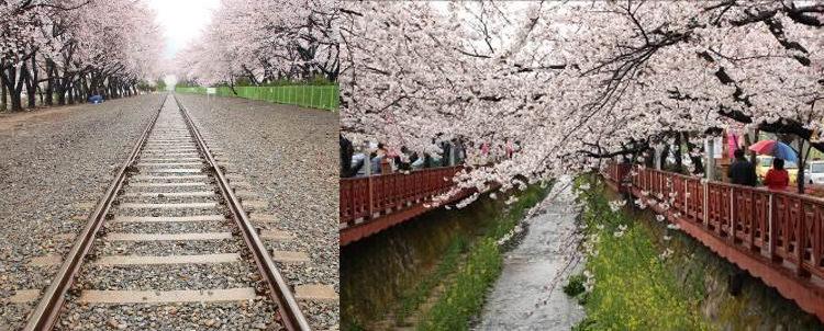撮影ツアー写真 韓国