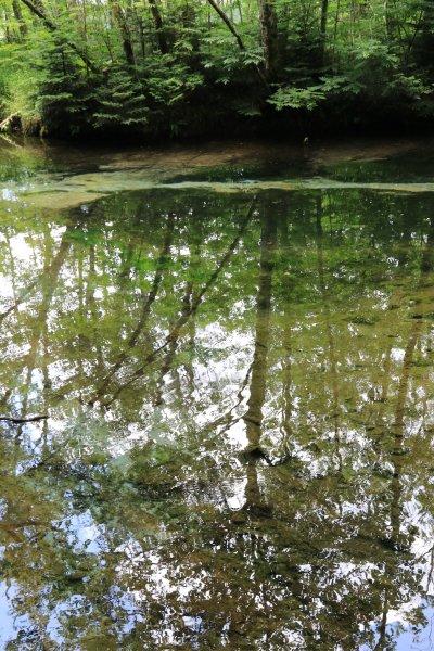 【撮影地情報】 梓川の清流は今も変わらず綺麗だった。「信州上高地」9