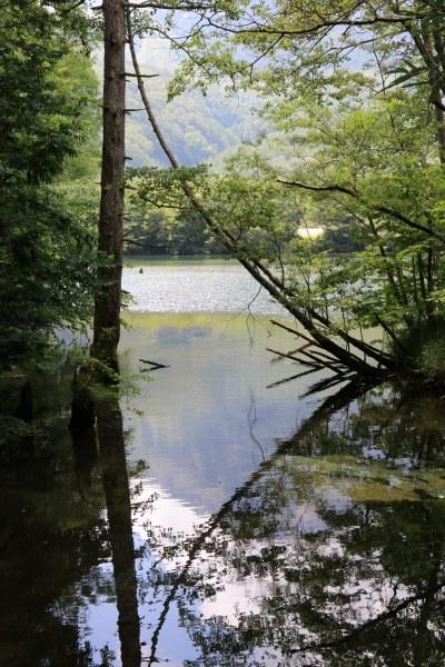 【撮影地情報】 梓川の清流は今も変わらず綺麗だった。「信州上高地」10