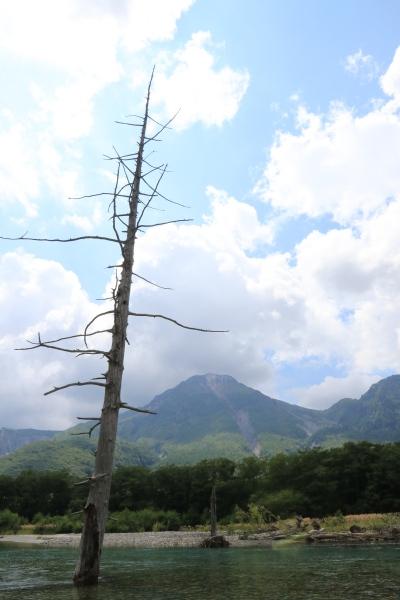 【撮影地情報】 梓川の清流は今も変わらず綺麗だった。「信州上高地」11