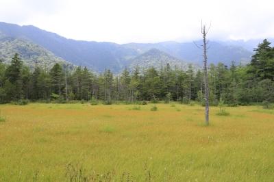 【撮影地情報】 梓川の清流は今も変わらず綺麗だった。「信州上高地」14