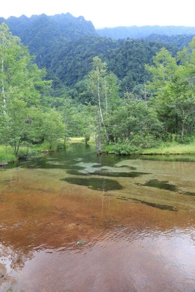 【撮影地情報】 梓川の清流は今も変わらず綺麗だった。「信州上高地」15