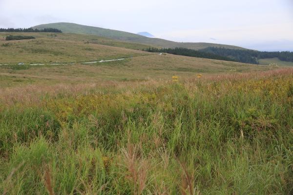 【作例付き撮影地情報】 高原をゆっくり楽しむ「信州・ビーナスライン」【作例付き撮影地情報】 高原をゆっくり楽しむ「信州・ビーナスライン」