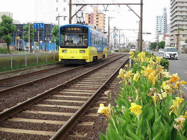 阪堺電車、乗り放題、一日乗車券、テクテクキップ